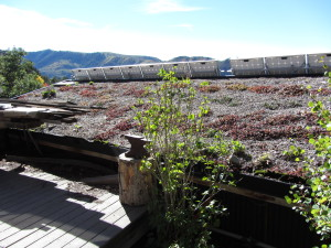 Green roof at off-grid Basalt Mountain Gardens