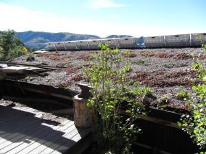 Green roof at off-grid Basalt Mountain Gardens