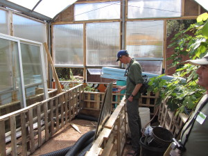 Greenhouse build in progress at CRMPI